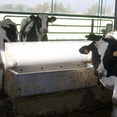 abbeveratoi bovini Brescia, Agroservice