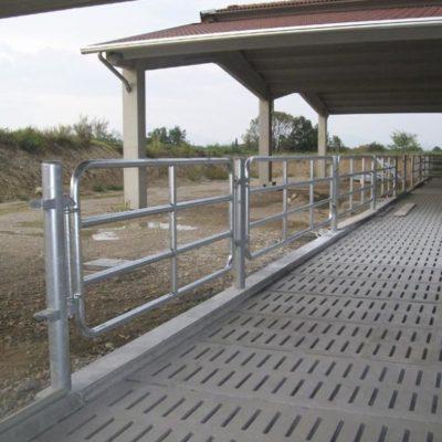 cancelli per stalle bovini Brescia, Agroservice
