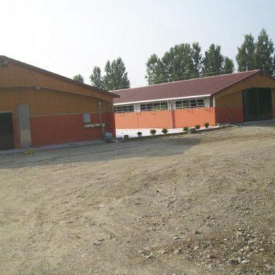 Capannone per suini Brescia, Agroservice