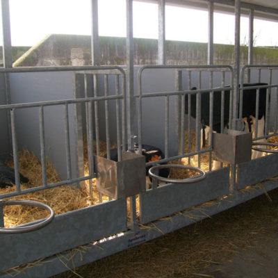 Realizzazioni per Vitelli Brescia, Agroservice