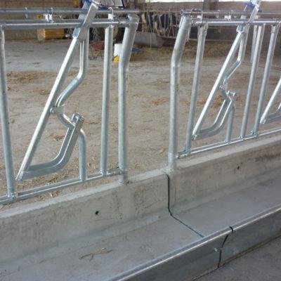 Soluzioni con mangiatoie per bovini Brescia, Agroservice